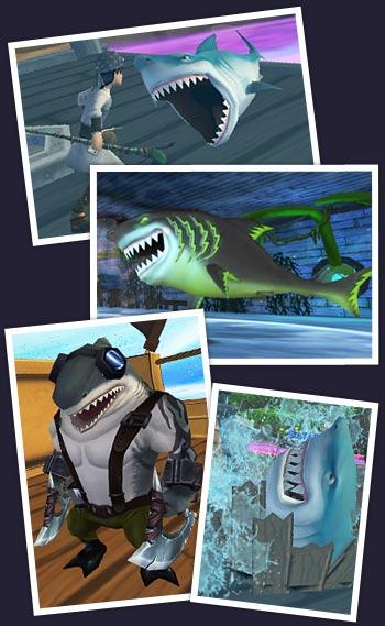 Pirate Shark Week